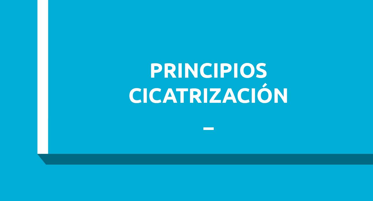 PRINCIPIOS BÁSICOS DE LA CICATRIZACIÓN